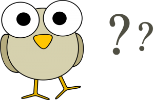 googley-eye-birdie-has-questions-800px